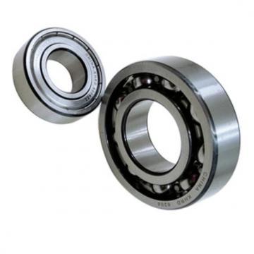 SKF/NSK/NTN/Koyo/NACHI Thrust Ball Bearing (51205)