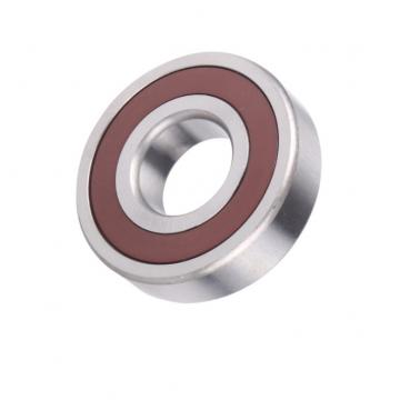 SKF High Quality Cylindical Roller Bearing (NJ2204EC)